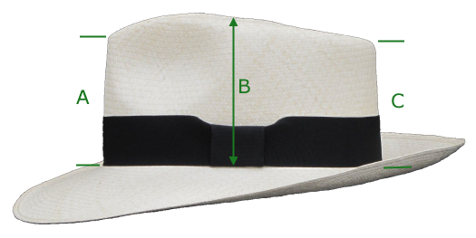 image measurement panama hat